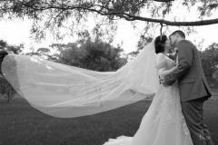 Wedding in Auckland