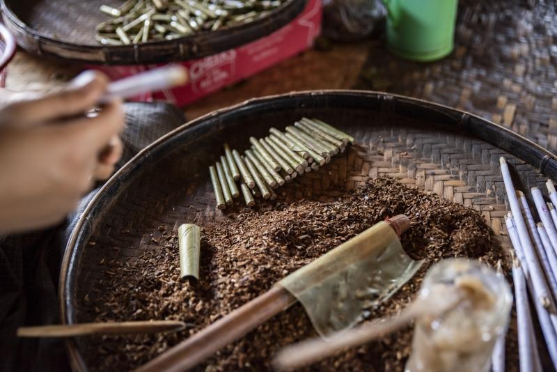 Tabacco  - Inle Lake, Myanmar